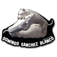 Domingo Sánchez Blanco